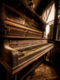 Musical Dreams Photographie par Stephen Arens