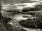 Flood Lines Fotografie-Druck von Stephen Arens