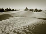 Sahara Desert, Douz,Tunisia Fotografisk tryk af Jon Arnold