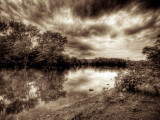 Calming Fotodruck von Stephen Arens