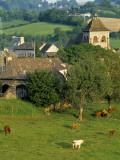 Junac, Montsalvy, Auvergne, France Fotografie-Druck von Peter Adams