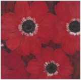 Triple Red Anemone Poster by  Ivo