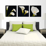 Night Callas Wall Decal