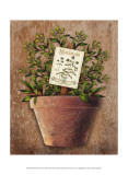 Potted Herbs IV Prints by Kate Ward Thacker