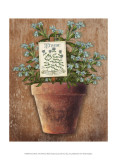 Potted Herbs I Poster by Kate Ward Thacker