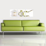 Orchid Reflection Wall Decal