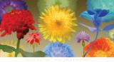 Sunflower Fireworks Posters af Robert Mertens