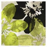 Bloomer Tile VI ポスター : ジェームス・バーグハート