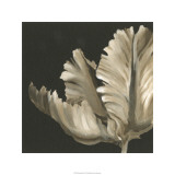 Classical Blooms II Limited Edition by Ethan Harper