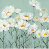 White Poppies II Posters by Olivia Long