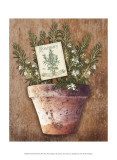 Potted Herbs II Prints by Kate Ward Thacker