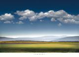 William Vanscoy - Catch the Wind Obrazy