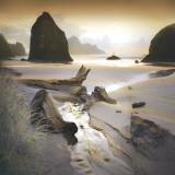 She Sleeps In The Sand Kunstdrucke von William Vanscoy