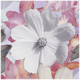 Lovely Bloom II Detail Prints by Matina Theodosiou