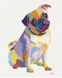 Pug Sketch Posters by Patti Mollica