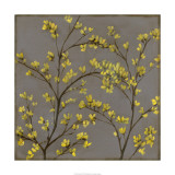 Forsythia II Limited Edition by Jennifer Goldberger