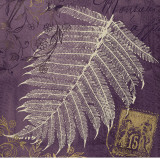Lavender Fern Posters by Booker Morey
