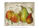 Fresco Fruit X Prints by Kate Ward Thacker