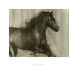 Dynamic Stallion I Edition limitée par Ethan Harper