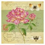 Beautiful Garden II Prints by Jane Maday
