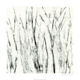 Birches I Premium Giclee Print by Sharon Gordon