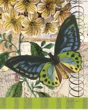 Bountiful Butterfly II Art by Walter Robertson