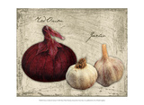 Fresco Garlic & Onions Prints by Kate Ward Thacker