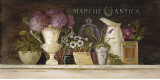 Marche Antica Vignette Prints by Angela Staehling