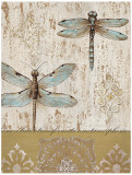 Dragonfly Evolution Posters by Elle Summers