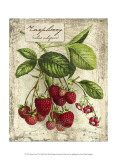 Fresco Fruit IV Prints by Kate Ward Thacker