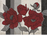 Roses and Stripes II Prints by Ariane Martine
