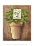 Potted Herbs III Print by Kate Ward Thacker