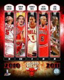 Chicago Bulls - Chicago Bulls Team Comp 2010-11 Photo