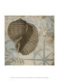 Coastal Cottage III Prints