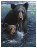 Bearly Swimming Print by Kevin Daniel