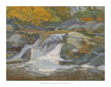 Trout Stream Giclee Print by Stephen Calcasola