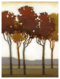 Arboreal Grove I Prints by Norman Wyatt Jr.