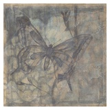 Ethereal Wings IV Print by Jennifer Goldberger