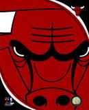 NBA Chicago Bulls - Chicago Bulls Team Logo Photo