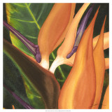 Bird of Paradise Tile I Prints by Jason Higby