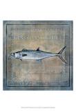 Ocean Fish III Prints