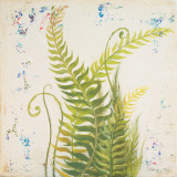 Nice Ferns I Prints by Patricia Quintero-Pinto