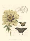 Small Vintage Floral II Print