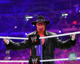 World Wrestling Entertainment - The Undertaker WrestleMania XXVII Action Photo