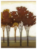 Arboreal Grove II Prints by Norman Wyatt Jr.