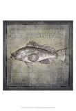 Ocean Fish II Poster