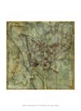 Small Ethereal Wings VI Plakater af Jennifer Goldberger