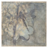 Ethereal Wings III Prints by Jennifer Goldberger