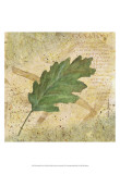 Antiqued Leaves II Posters by Linda Grayson