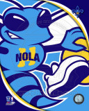 New Orleans Hornets - New Orleans Hornets Team Logo Photo